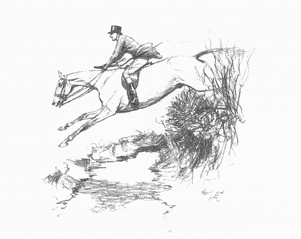 """Notwithstanding your vigorous kicks, she eased up as she approached the ditch in front of her, springing off her hocks straight on to the top of the bank and broken fence, with her ears cocked forward ready for the Irish ditch on the landing side."""