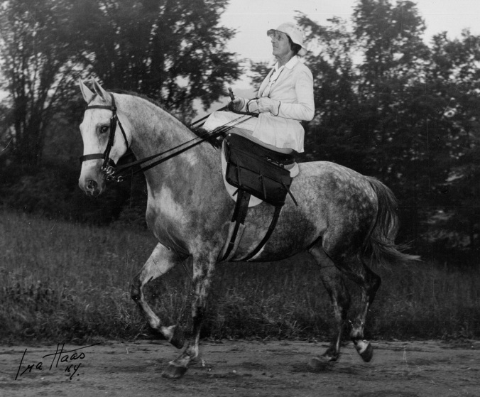 Mrs. Fletcher Harper, photograph by Ira Haas, NY. National Sporting Library & Museum photographs collection.