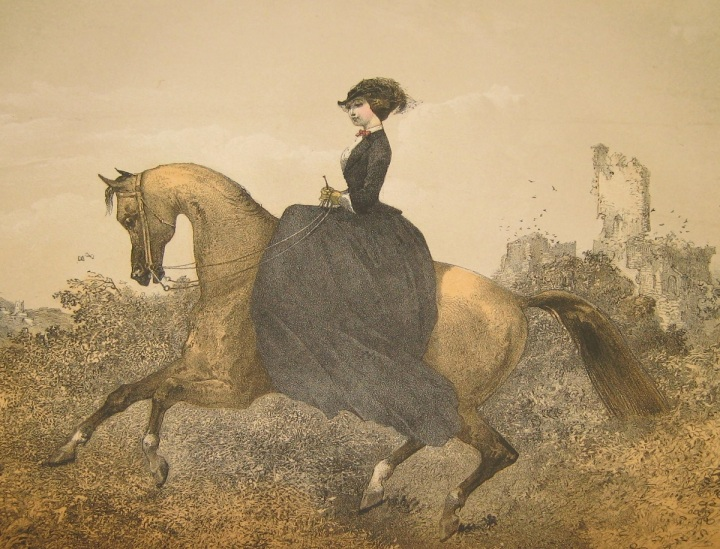 """Upon the principle of practicing what one preaches, I have always felt a delicacy in giving my own opinion on the question of ladies hunting; for having, in my younger days, indulged much in the sport (of which I was enthusiastically fond), to dissuade ladies from engaging in it, except in particular instances, is a counsel which may be little attended to from lips of mine."""