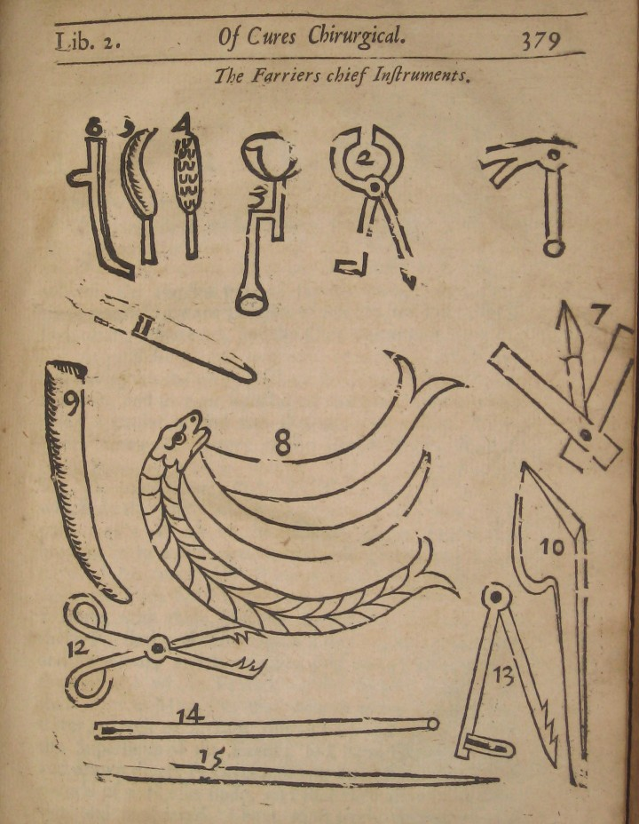 """The Farrier's Chief Instruments."""