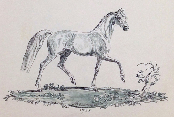 Messenger, 1788. Messenger was an important foundational sire of racing blood stock in the United States. Imported shortly after the American Revolution, Messenger was a British thoroughbred descended from the Godolphin Arabian.