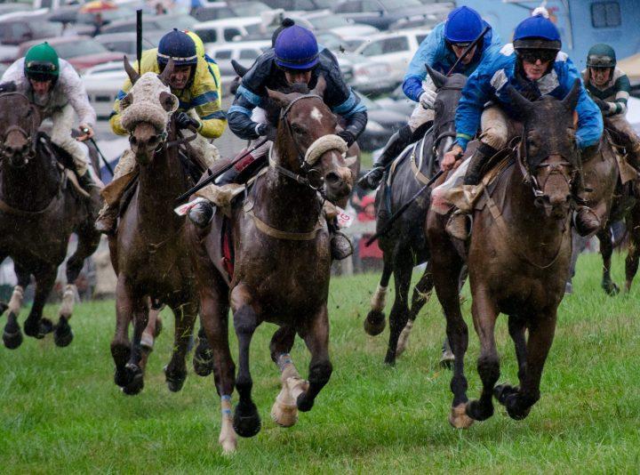mathewes-2016-fall-races_1