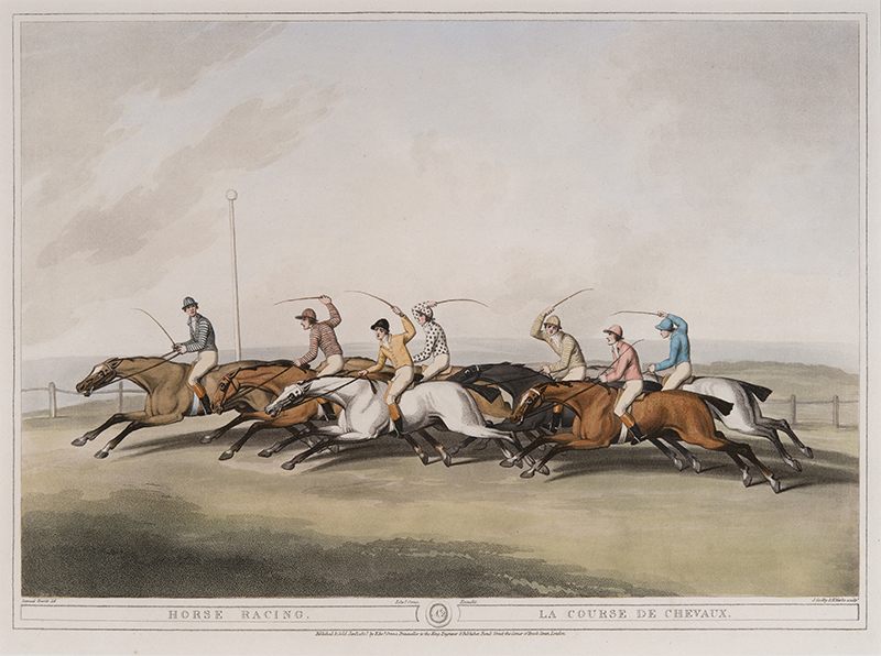 persuasive essay jumps racing Superracing melbourne cup 2014: racing industry and animal welfare share love of horses as a nation mourns the two horses that died after yesterday's brutal.