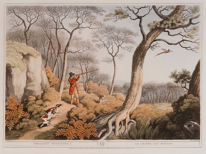 (after) Samuel Howitt (English, 1765-1822), Engraved by John Clark (English, active 1775-1825) and Henri Merke (Swiss, active c.1800 – c.1820) Pheasant Shooting 1 Published by Edward Orme, June 1, 1807 hand-colored aquatint, 13 ¼ x 17 ⅜ inches National Sporting Library & Museum, Gift of George and Susan Matelich and Family, 2016 (2016.04.13)