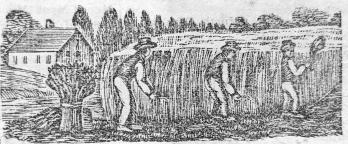 engraving-harvest