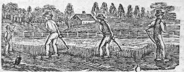 engraving-mowing