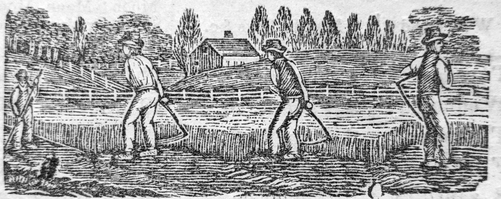 engraving-mowing