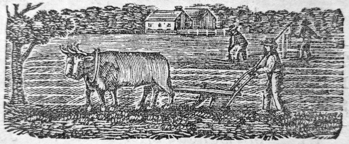 engraving-plowing