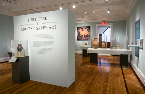 The Horse in Ancient Greek Art installation at NSLM