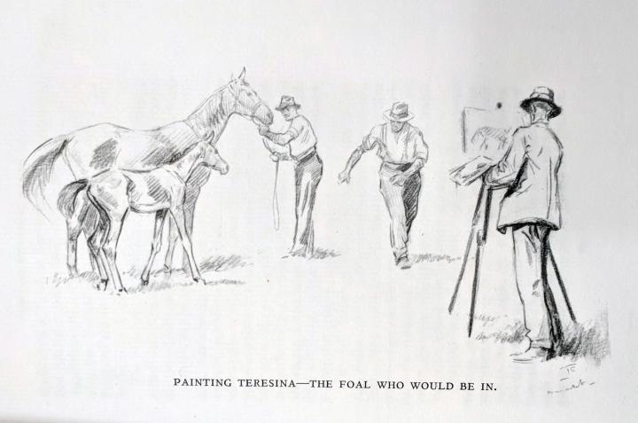 teresina-foal