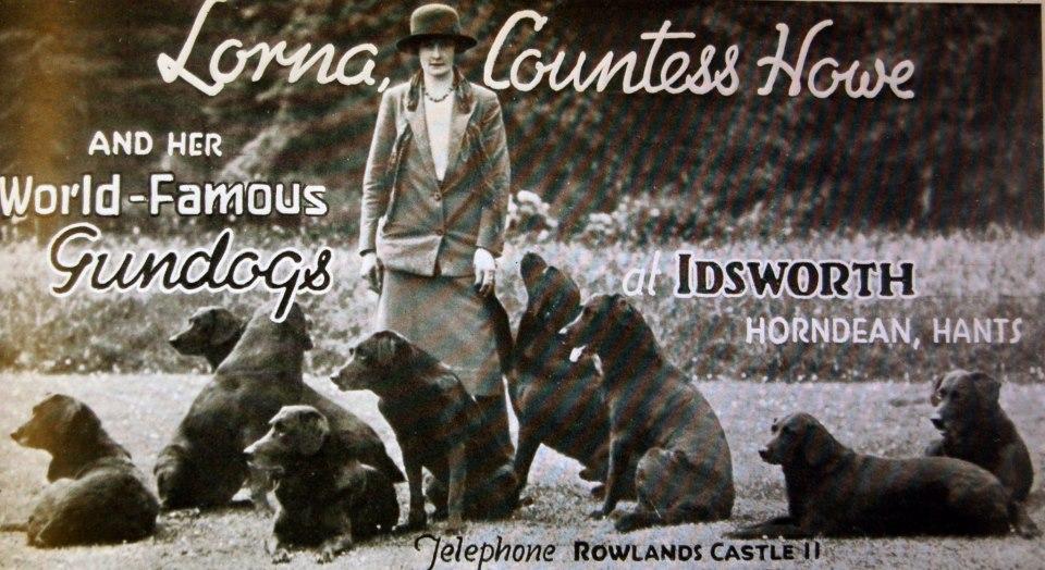 Contess Howe